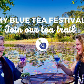 Our Very Own My Blue Tea Festival Trail