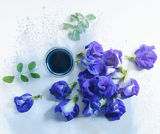 My Blue Tea blue pea flower powder on sale online