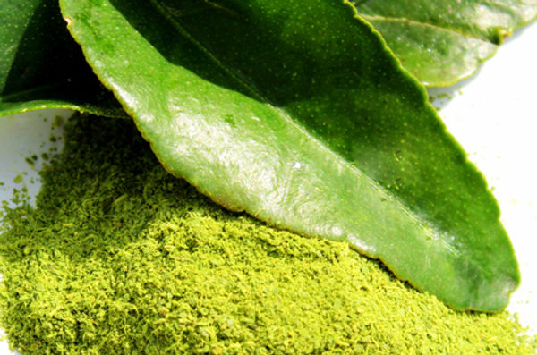 Buy kaffir lime leaves powder from My Blue Tea and enjoy all of its health benefits