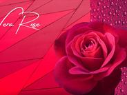 Vera Rose Spring 2021 eyewear colour