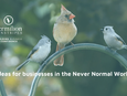 Let's talk about ideas for businesses in the Never Normal world