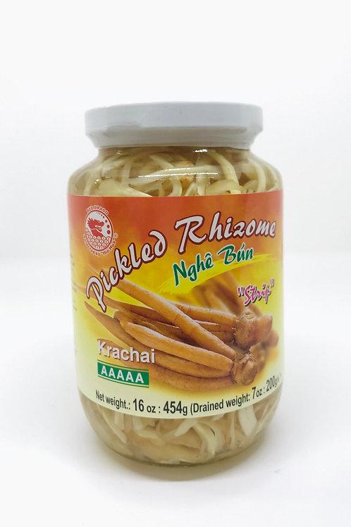 Pickled Rhizome