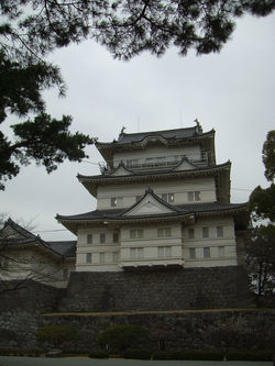 1002 Japan Trip Feb 3-14,Odawara Castle