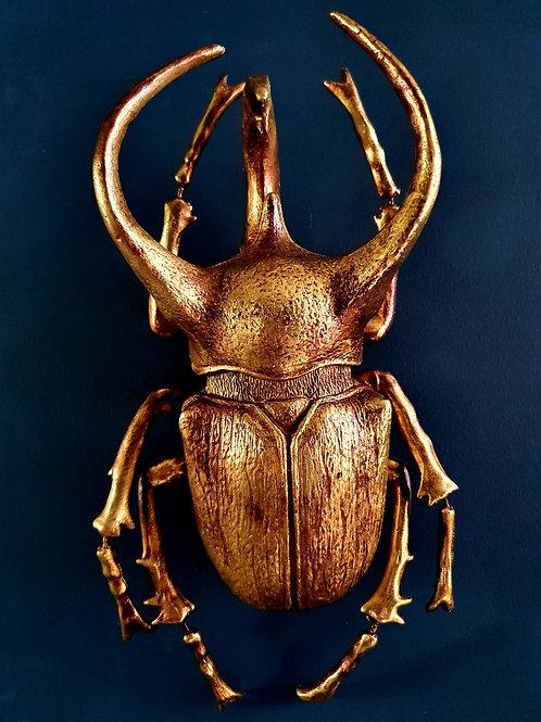 Gold Atlas Beetle Wall Decor
