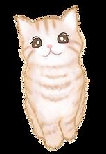 猫ちゃん2(PNG背景透明).png