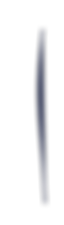 logo_d (5).png