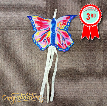Kite Craft Contest Winner - 3rd Place