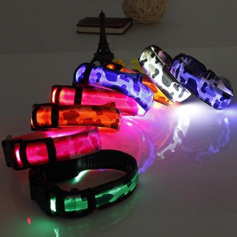 LED Collars