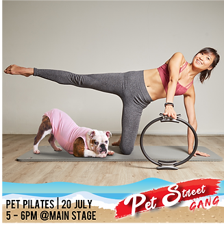 Pet Pilates IG post.png