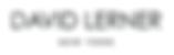 DavidLerner_Logo.png