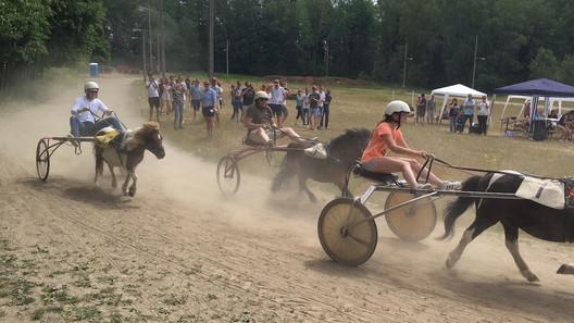 Sulky Race