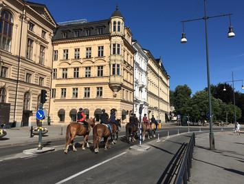 Tour te paard