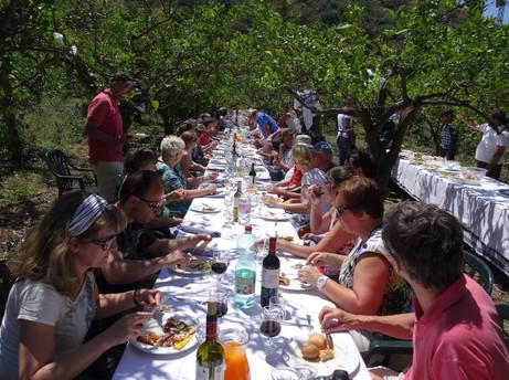 Picknick lunch in een boomgaard