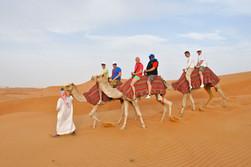 Tour met kamelen
