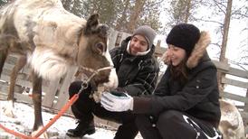 Meet Rudolph op de rendierenfarm