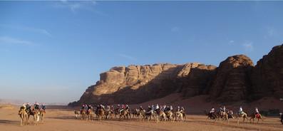 Per kameel door de woestijn