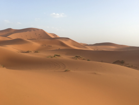 Lessons from the Sahara