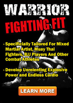 Warrior Mixed Martial Arts Fighting Fit.