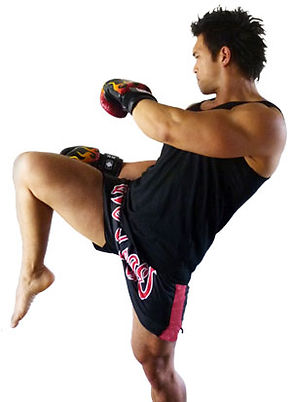 Mixed Martial Arts Strength & Conditioning Program