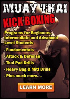 Private Muay Thai Kick Boxing Sessions