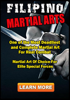 Private Filipino Martial Arts Sessions