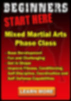 Private Mixed Martial Arts Sessions