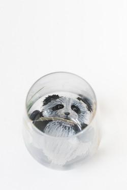 Panda 8_1347
