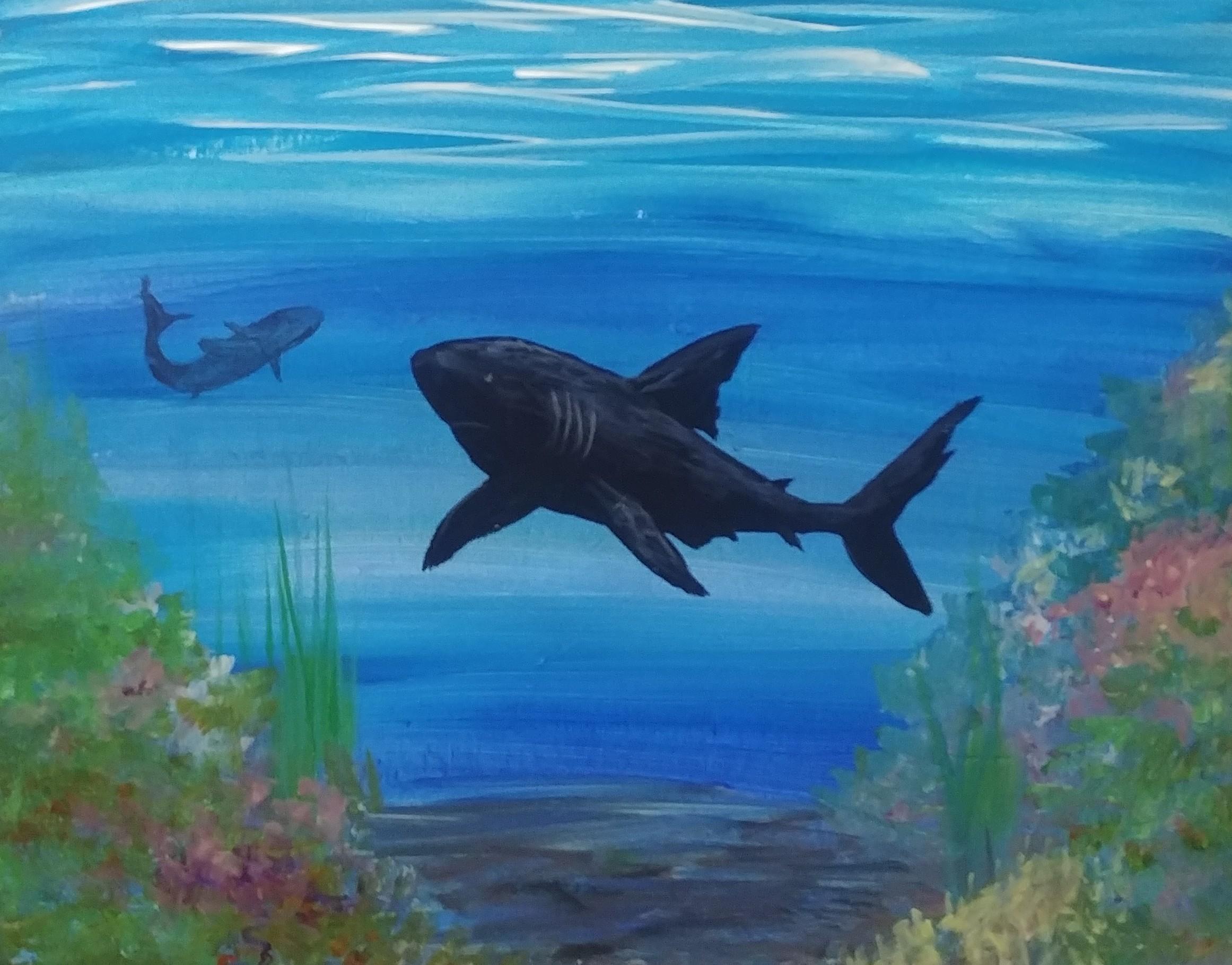 Under the sea Shark