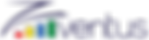 Logo Zventus-01.png