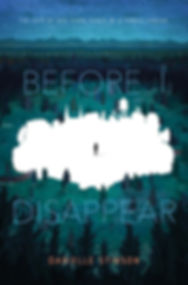 BEFORE I DISAPPEAR cover.jpg
