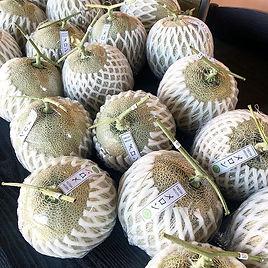 🍈เมล่อน Green net หวานหอม มีตลอดทั้งเดื