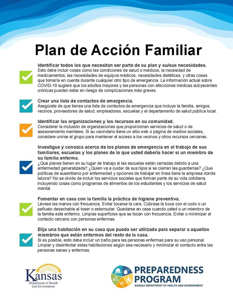 PLAN DE ACCIÓN FAMILIAR