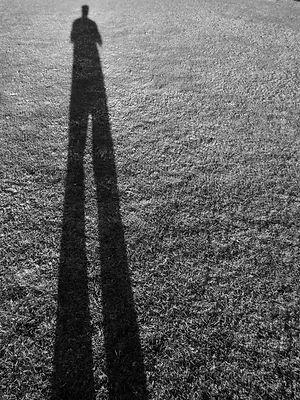 stand tall.jpeg