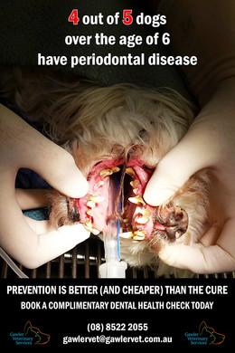Complimentary Dental Checks Periodontal