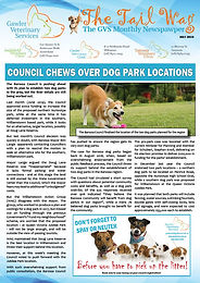 The Tail Wag July 2019.jpg