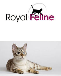 royal-feline_logo.jpg