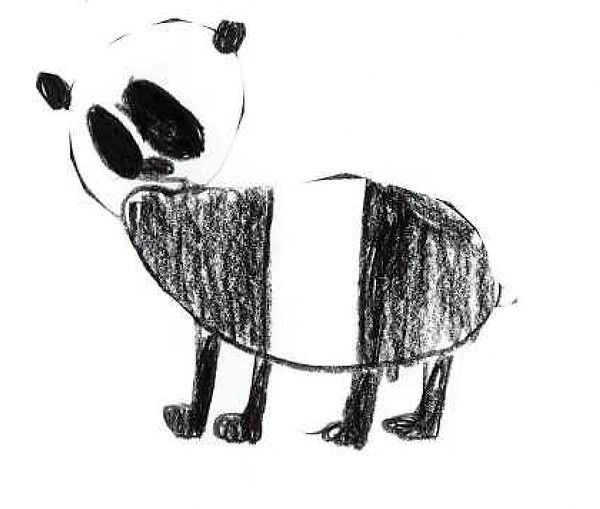 Animal Drawings - Panda.jpg