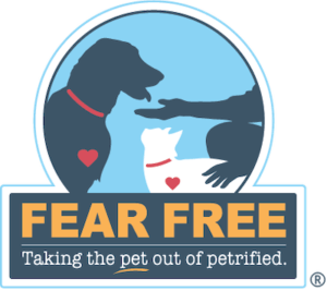 Our Fear-Free Starr
