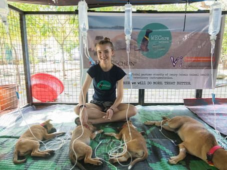 WECare Worldwide and the Street Dogs of Sri Lanka