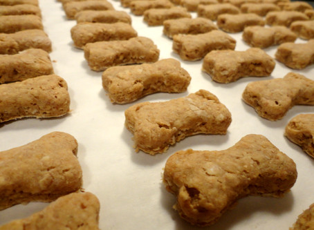 Easy dog treats to make at home