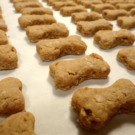 Easy dog treats to make at home