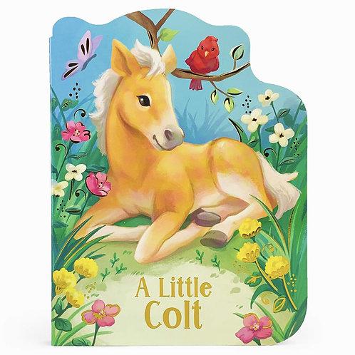 ASBB - A Little Colt