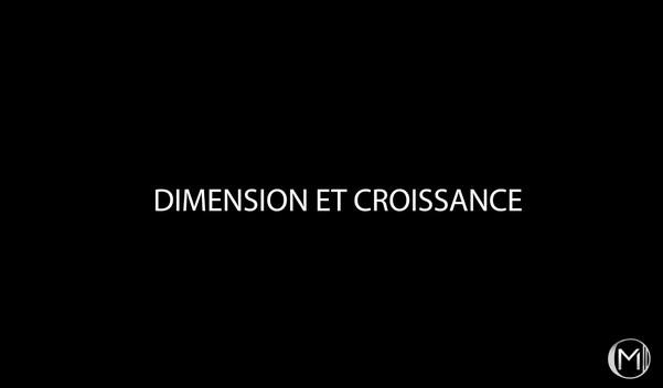 Dimension et croissance.jpg