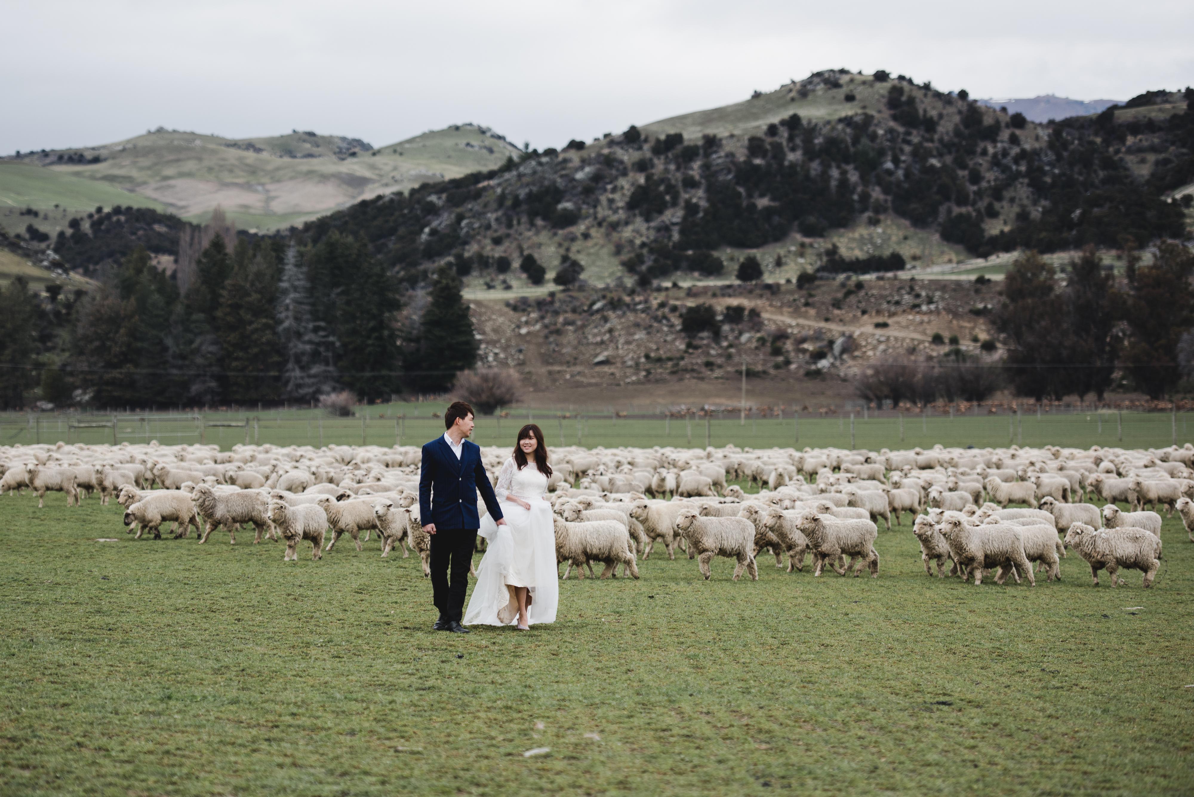 Julian & Liling - PW(NZ)-215