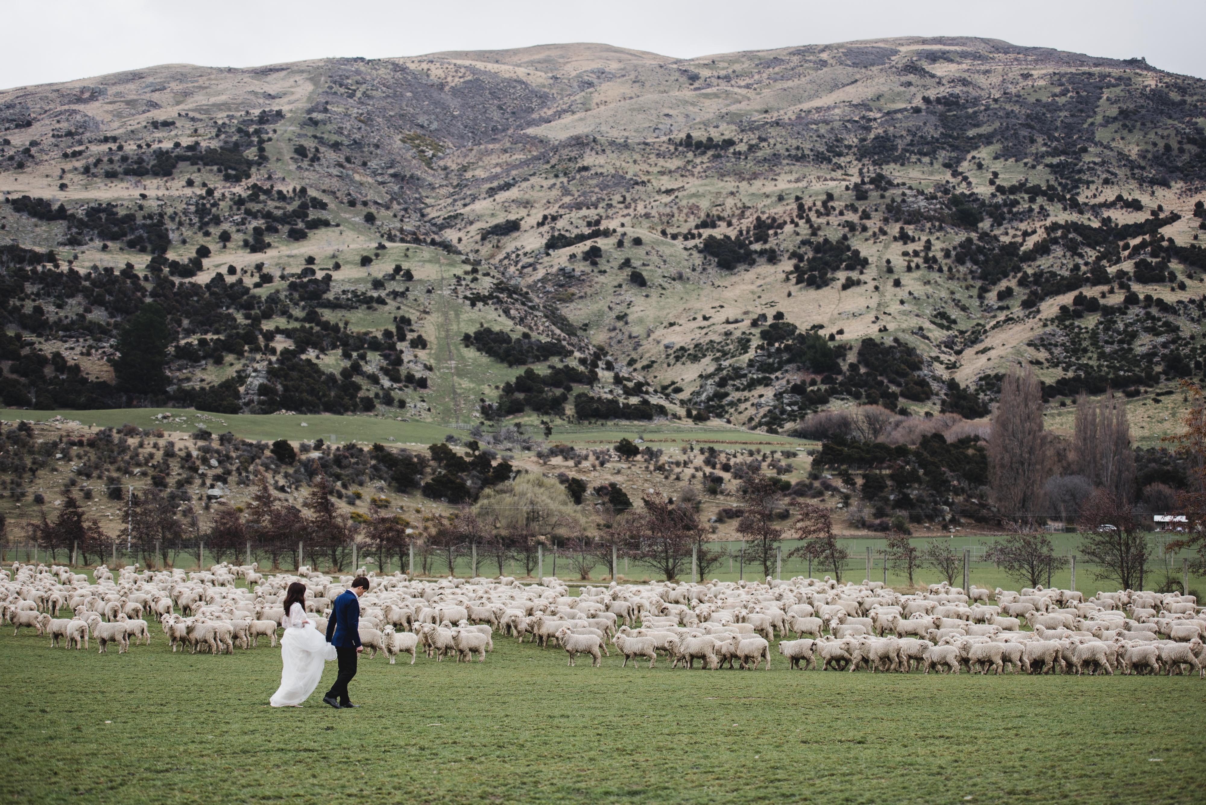 Julian & Liling - PW(NZ)-213