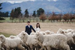 Julian & Liling - PW(NZ)-210