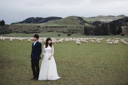 Julian & Liling - PW(NZ)-216