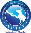 APDT_Prof_COLOR.png