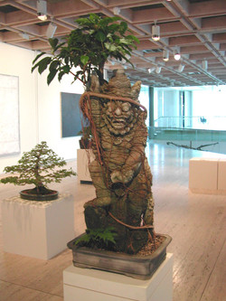 Fig over Hanaman in 2003