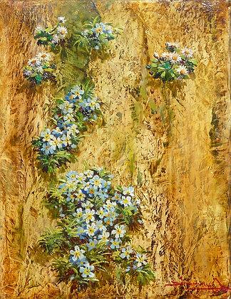 FLEURS DE MURAILLE - WALL FLOWERS